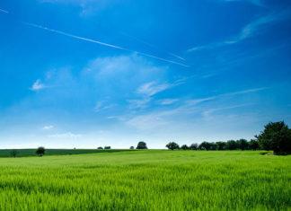 Agroturystyka - wyjście poza schemat